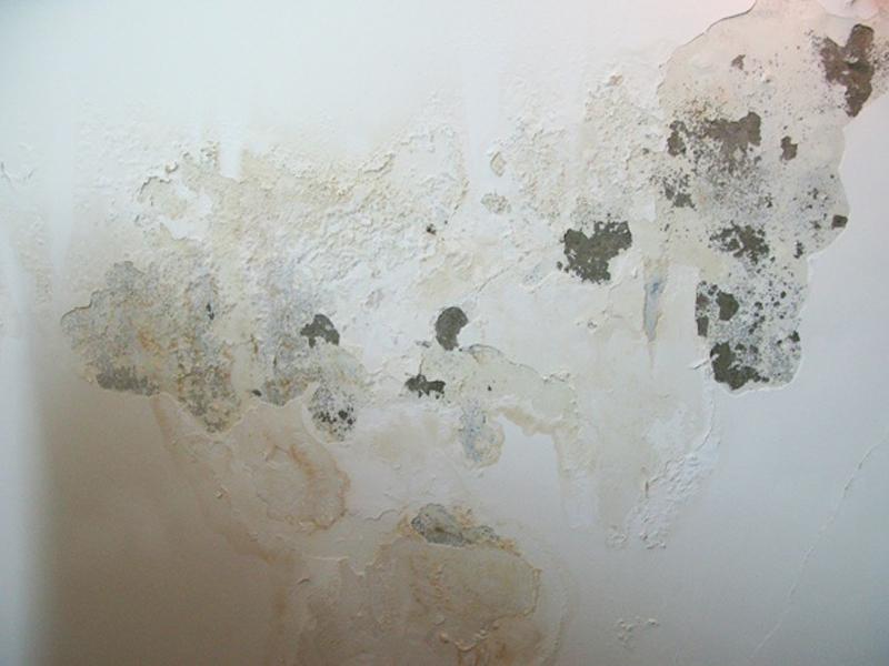 Lỗi xây nhà gây ra hiện tượng bông tróc tường