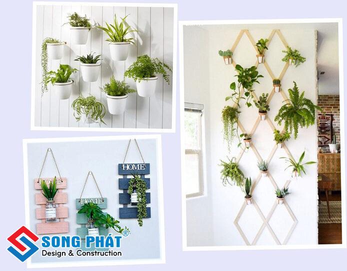 Trang trí nhà bằng cây xanh với ý tưởng tuyệt vời
