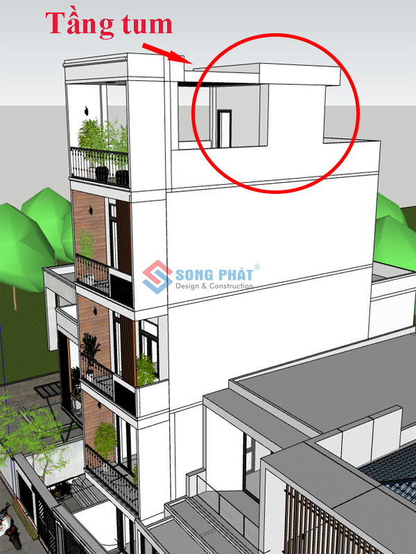 Thiết kế tầng tum là gì ?